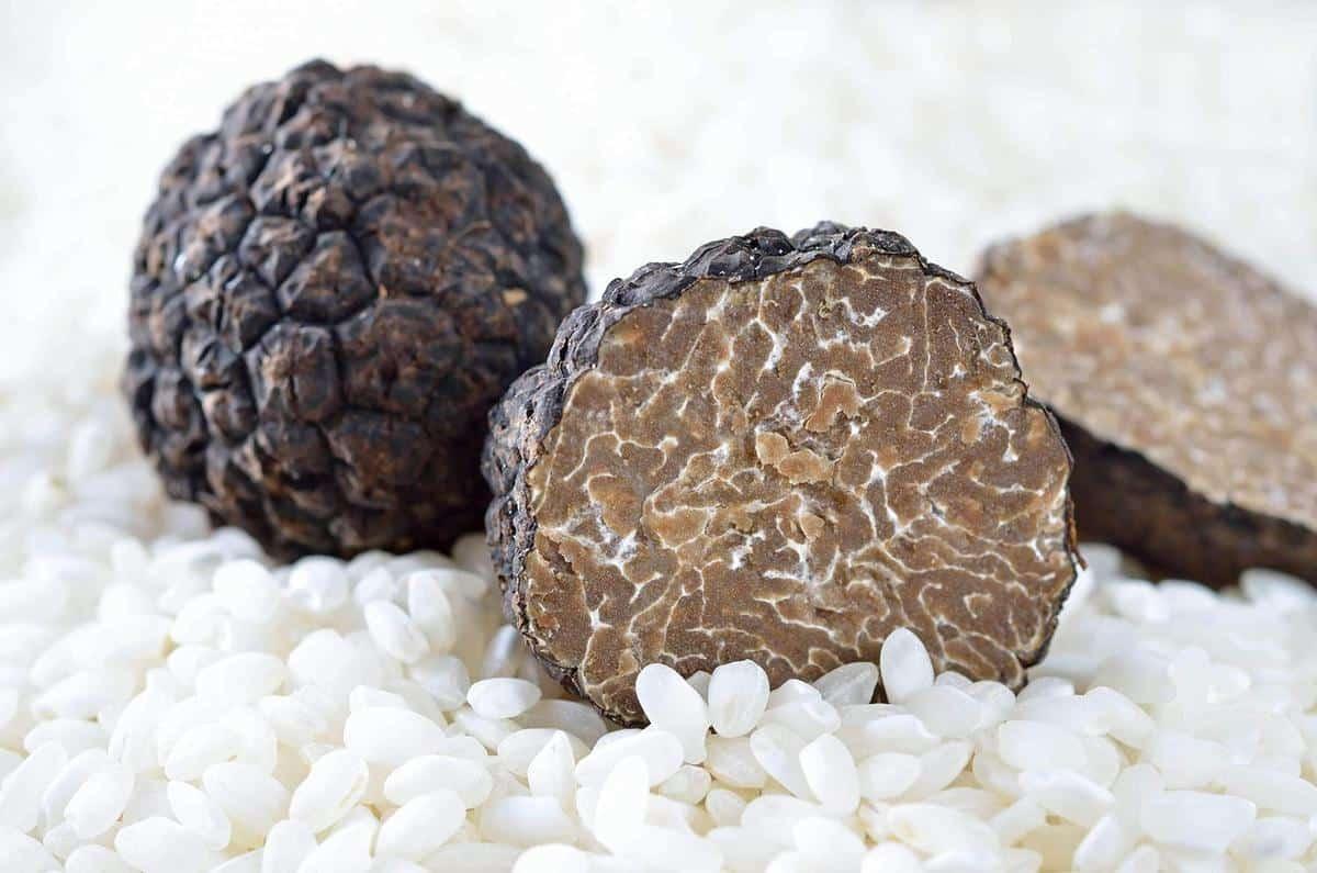 Cách bảo quản nấm trufle